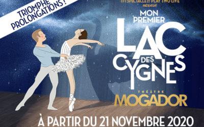 Retour du spectacle MON PREMIER LAC DES CYGNES